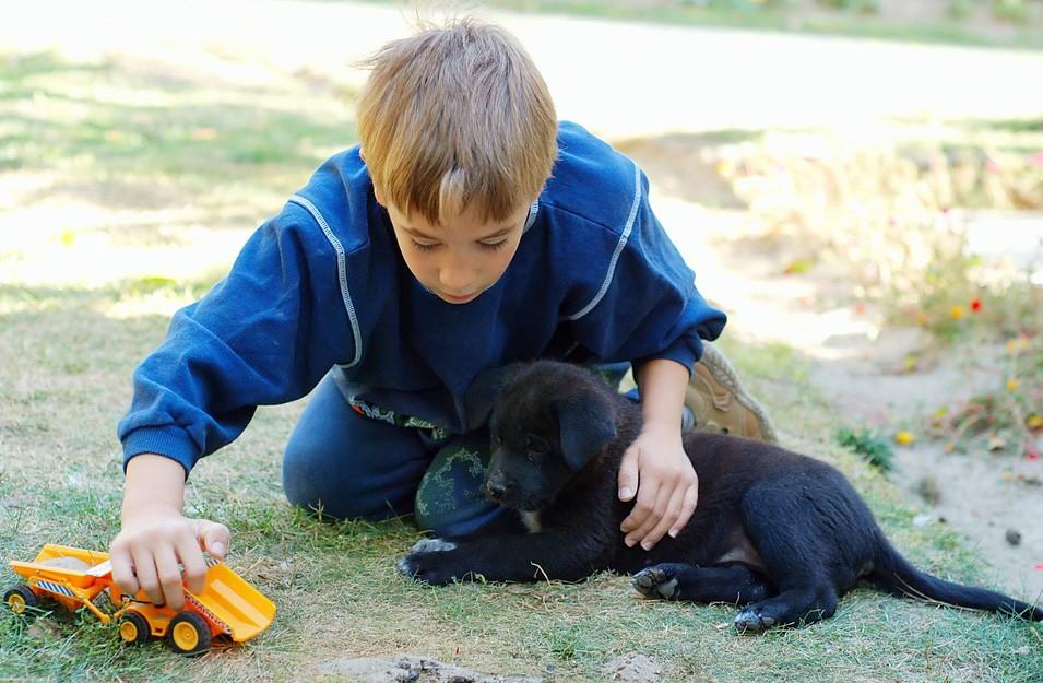 Is een huisdier goed voor kinderen?