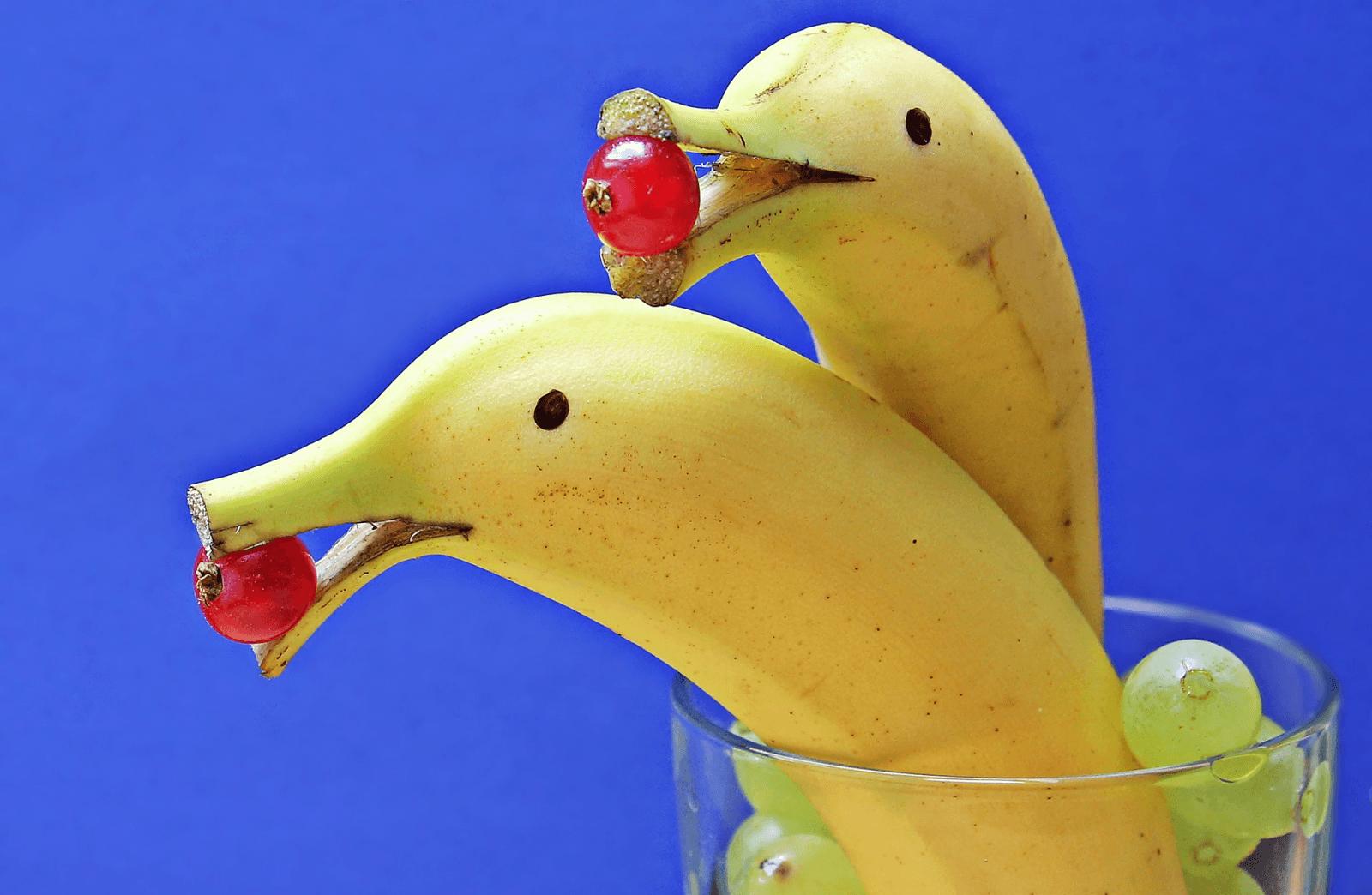 recept-gezonde-traktatie-dolfijn